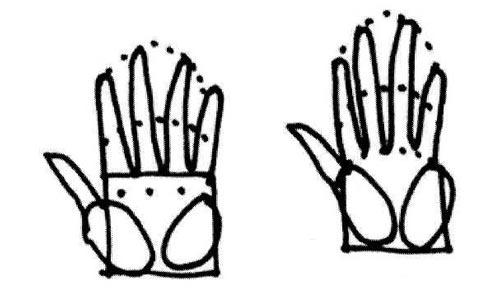 mains avec les phalanges