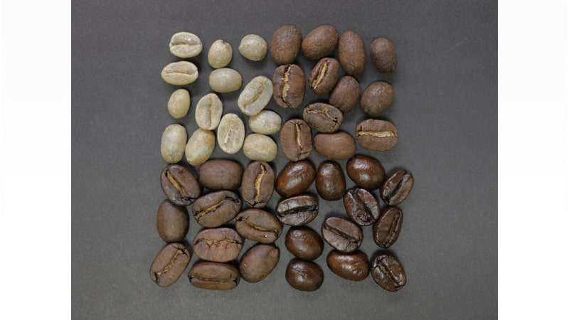Stages of Coffee Beans being Roasted