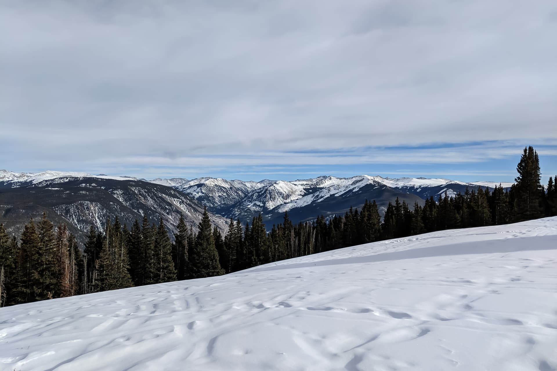 A distant, snow-capped mountain range. In the foreground is a snow-filled clearing, but thick pine forests block the view of the valley below.