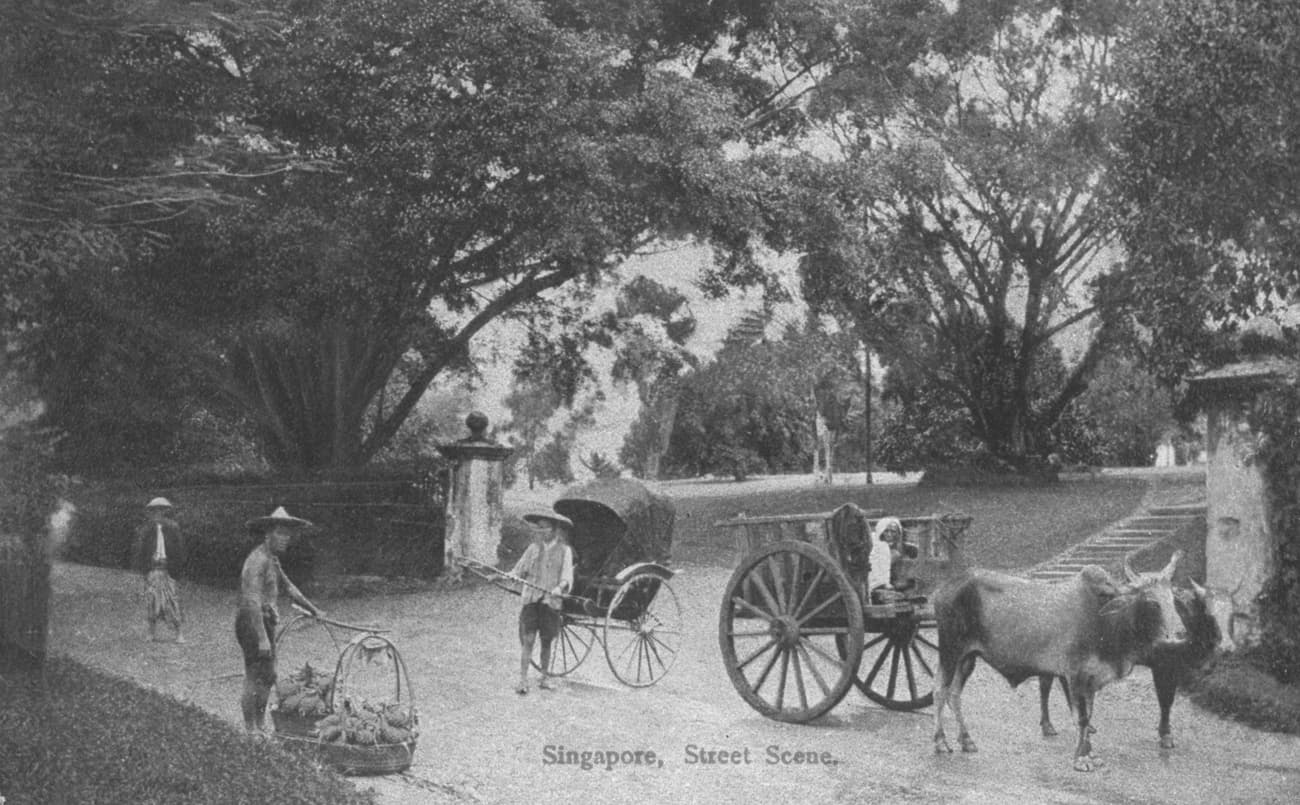 Street scene with rickshaw, bullock cart and hawker, 1900s