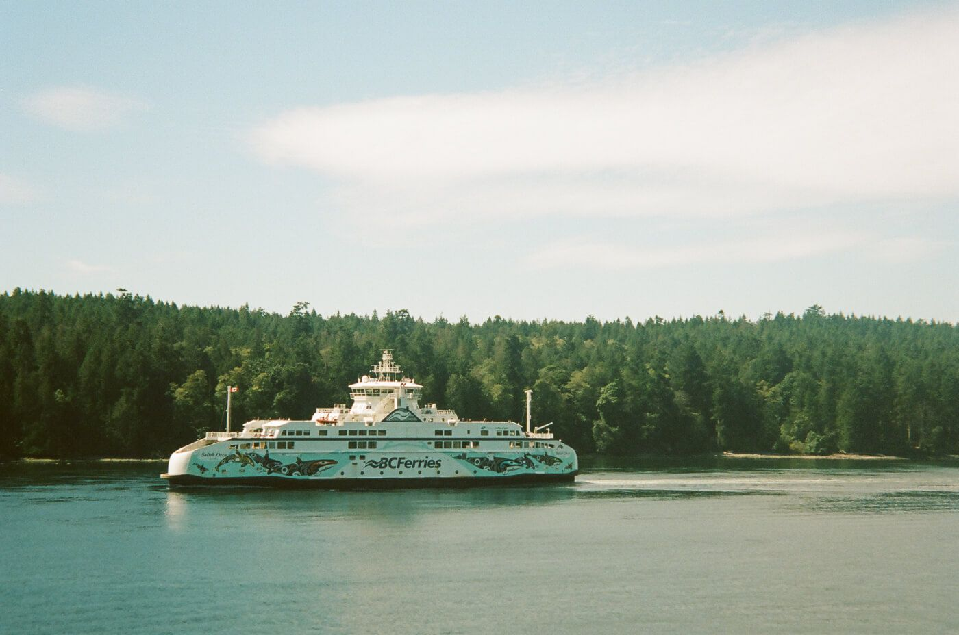 A ferry going past land with lots of trees.