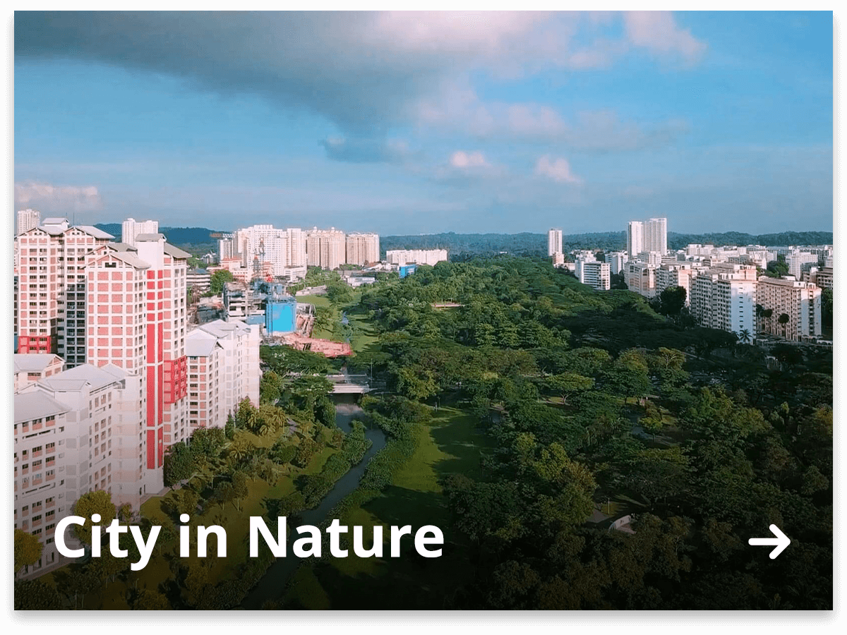 City in Nature