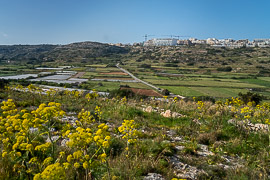 Mellieha, Malta, 2019