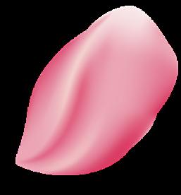 Petálo de adorno