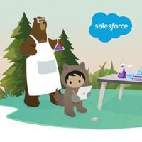 Astro the Adorable Salesforce Mascot.