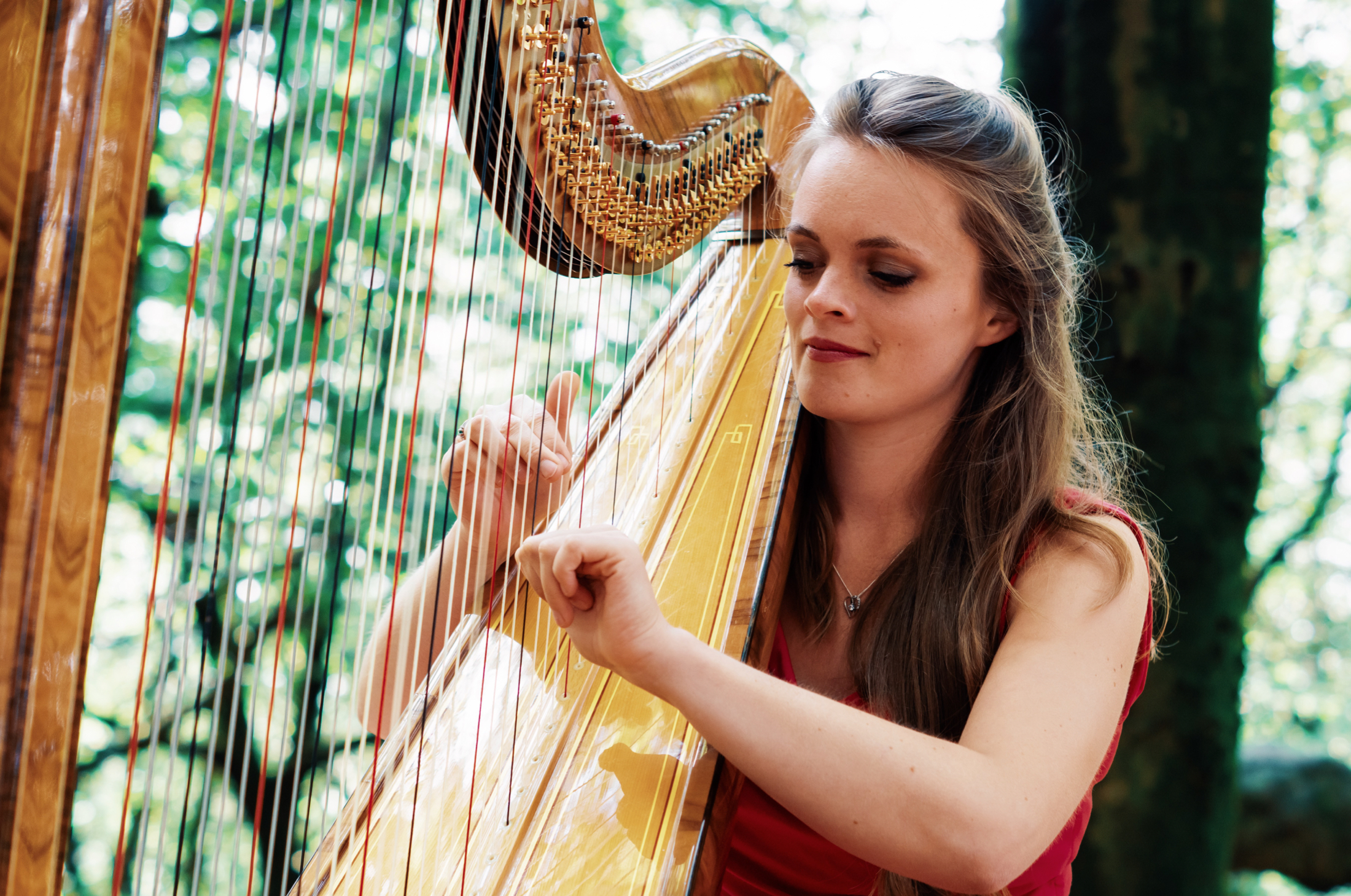 Natural photography by Jack Watkins in woodland for award-winning classical musician and harpist, Lucy Nolan