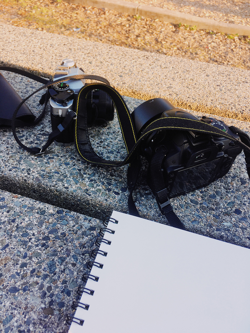 Cameras and a sketchbook on a park table.
