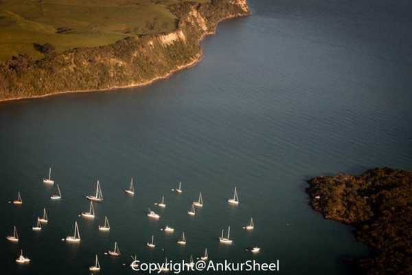 Auckland_Seaplanes-21