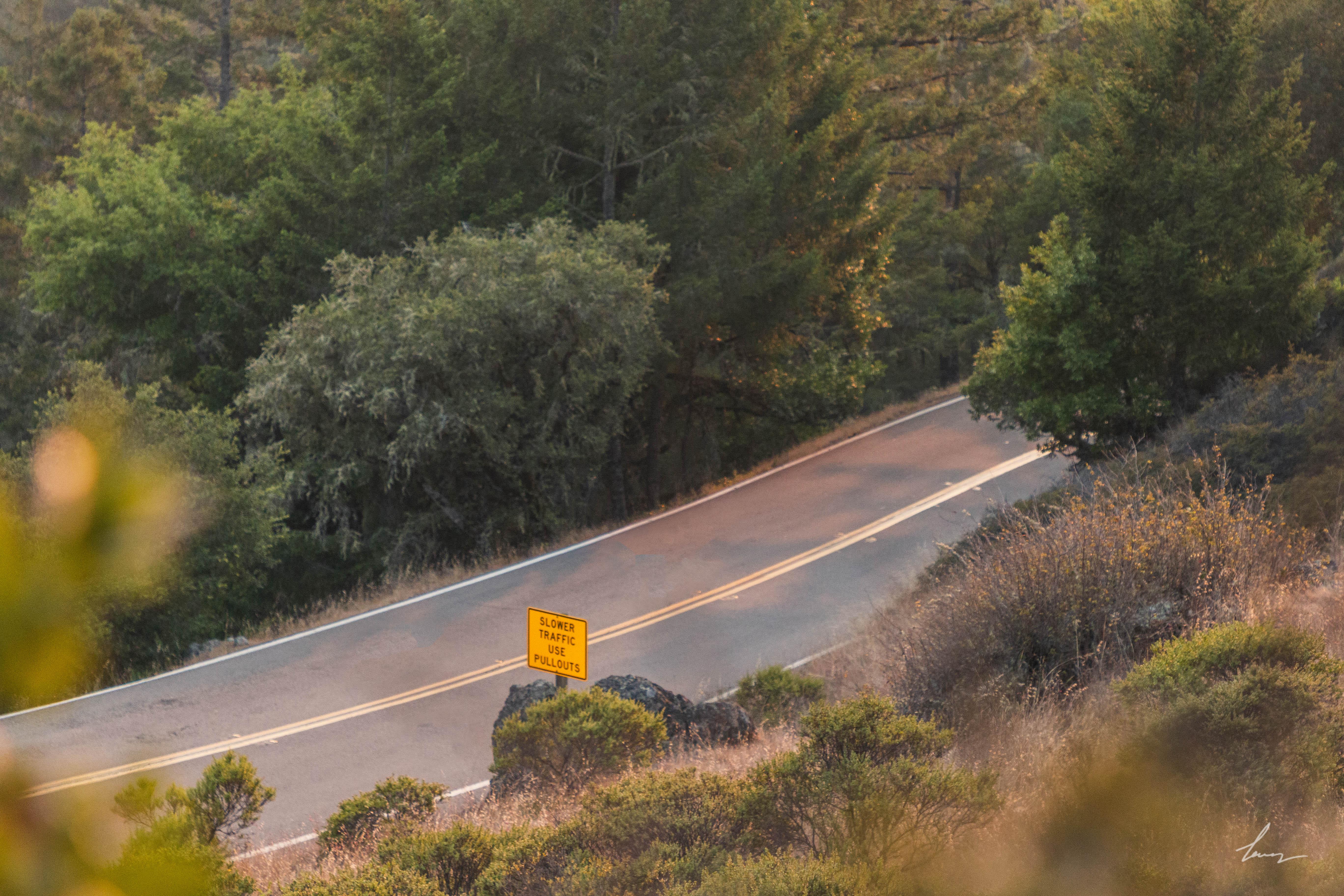 Panoramic Highway - Marin, California