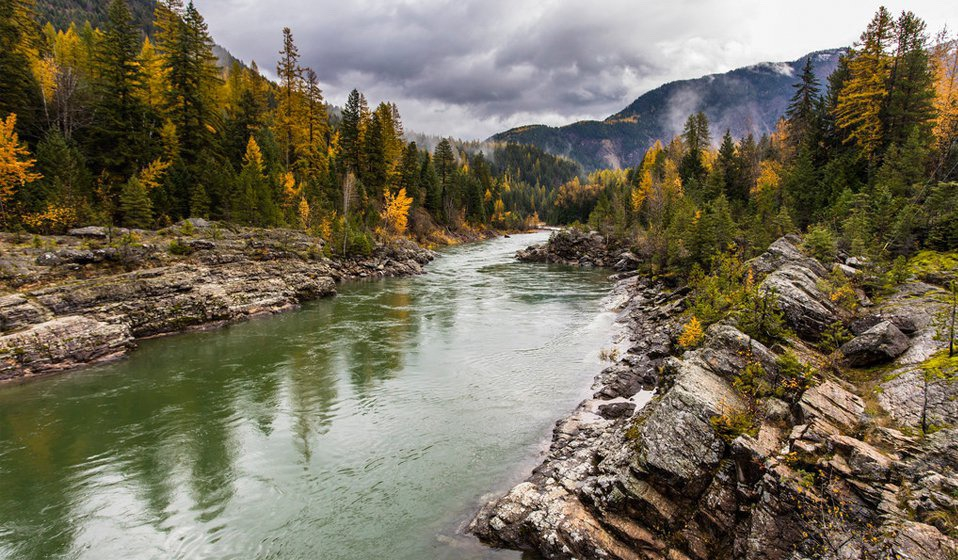 river flowing through Yellowstone National Park