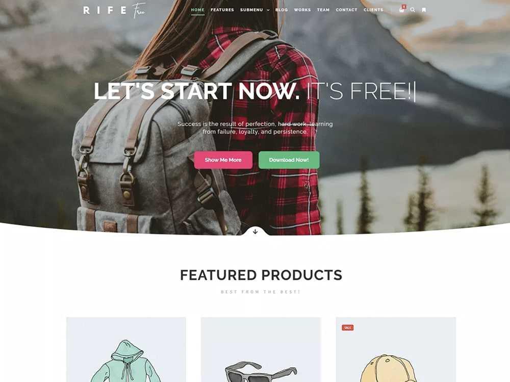 wordpress theme  0005 rife free