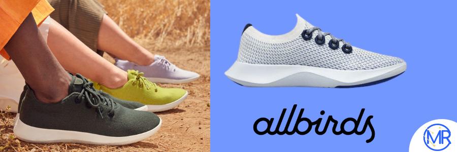 Allbirds Shoes Image