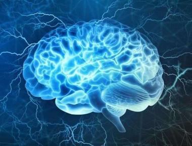 Curiozități despre Creier, cum poți păstra creierul tânăr