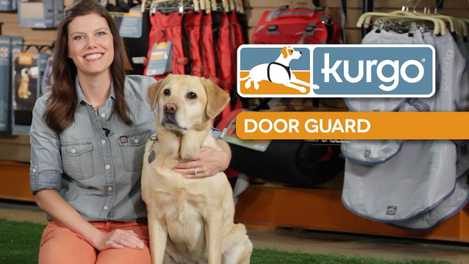 How to Install the Car Door Guard (VIDEO)