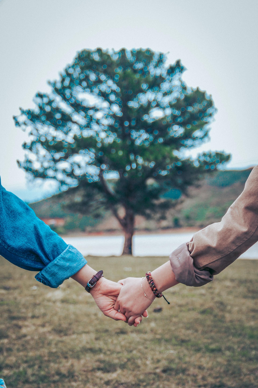 Caladrius Couples Therapy