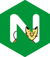 Tomcat X Nginx: Reverse Proxy