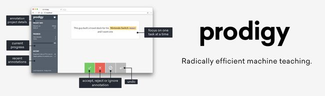 Prodigy: Radically efficient machine teaching