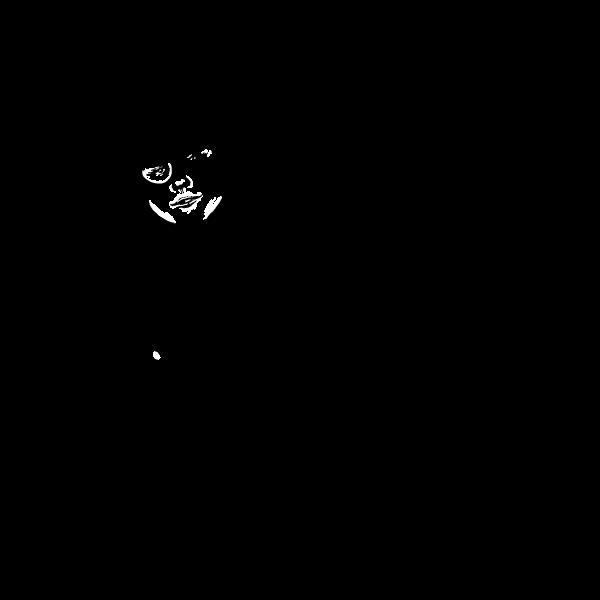 Drawing of a facilitator