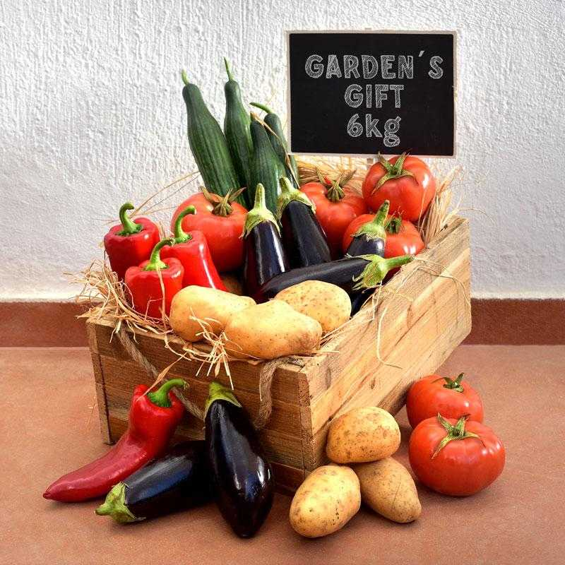 veg-box-with-5-varieties-of-fresh-greek-vegetables