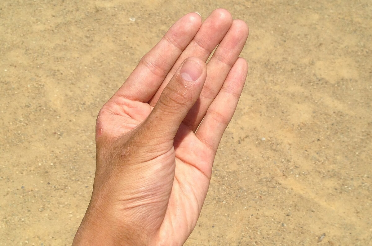 left hand image