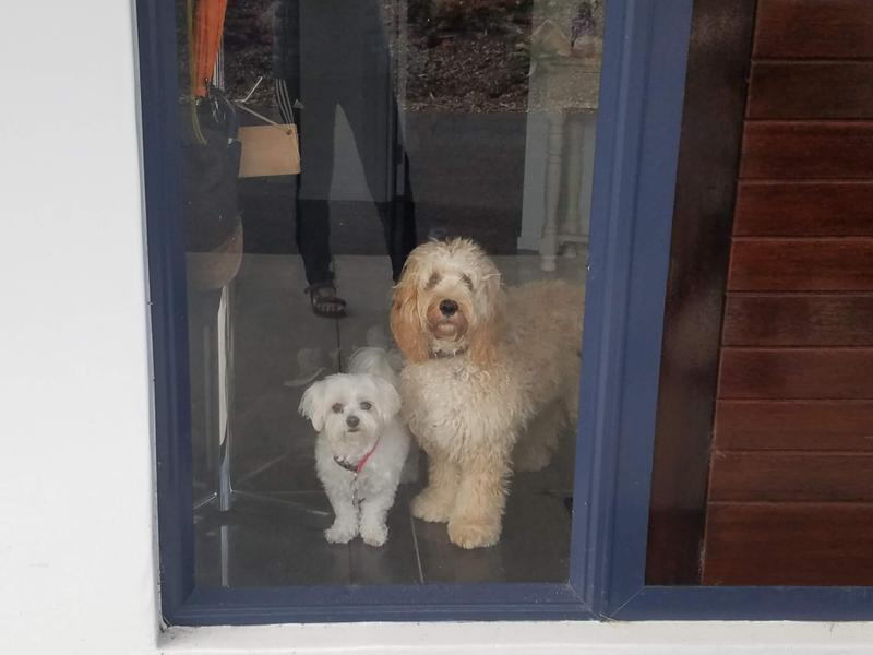 The welcome home committee