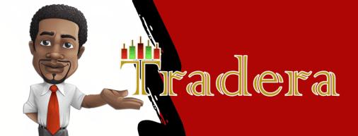 Introduction To TRADERA (Forex) Program