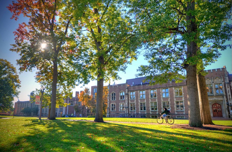 A student riding a bike past a campus building at Washington University in St. Louis on a sunny afternoon