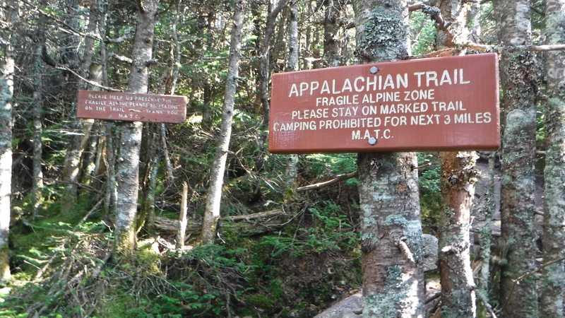 Warning signs at Saddleback Mountain's alpine zone