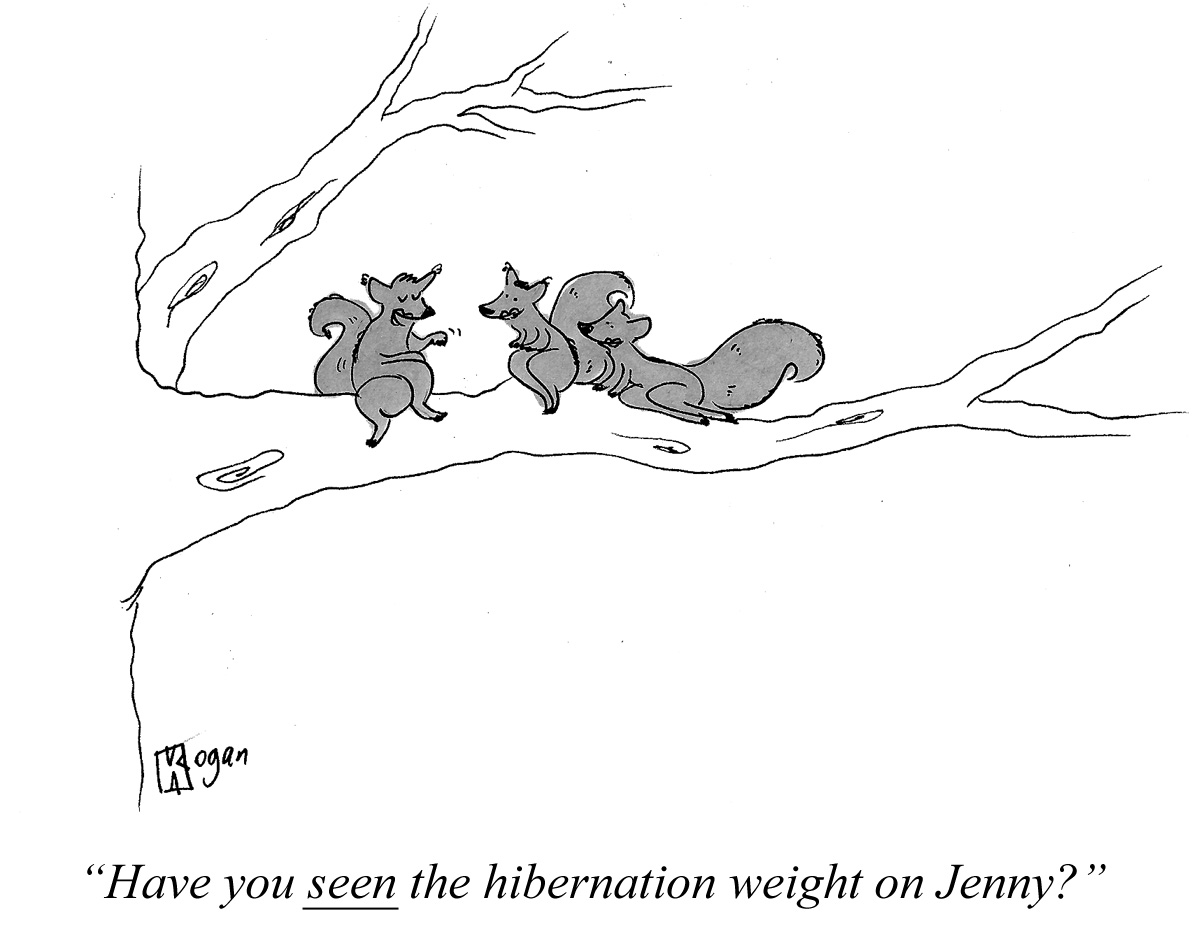 Have you seen the hibernation weight on Jenny?