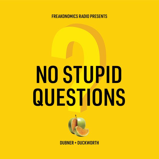 podcast cover of No Stupid Questions by Stephen Dubner and Angela Duckworth