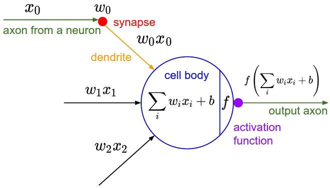 Cấu trúc nơ-ron học máy