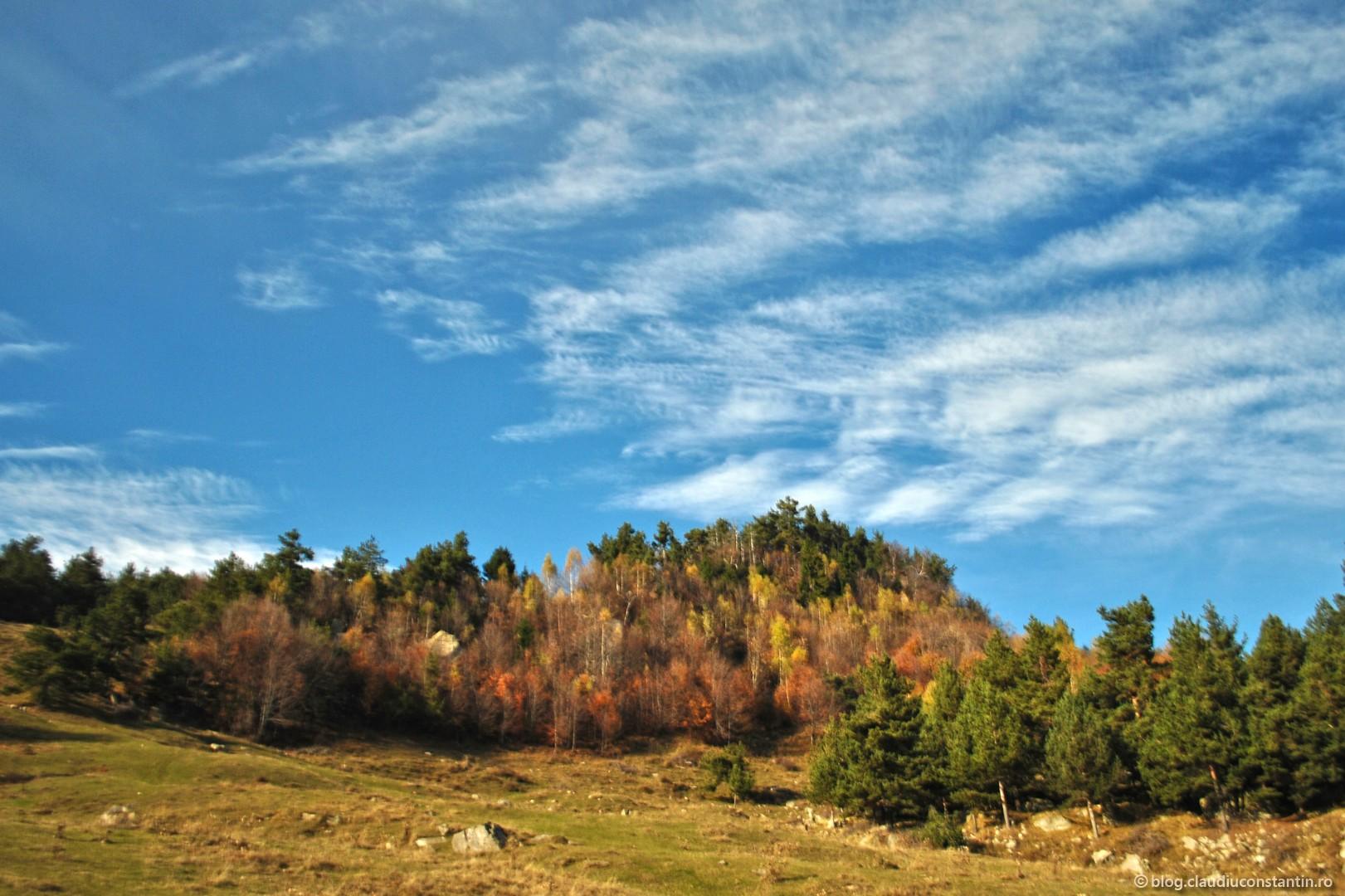 Vârful Ivănețu (1191m), Munții Buzăului