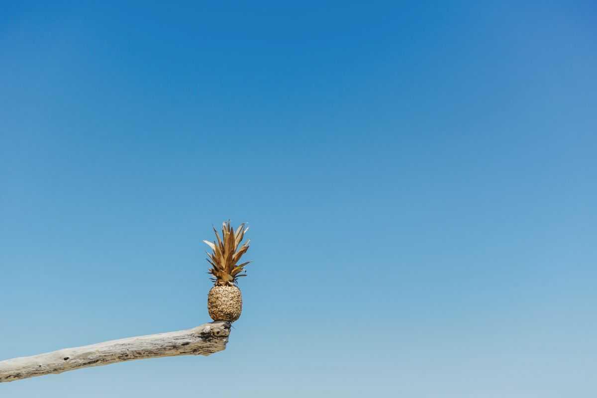 Freelance: trouvez l'équilibre professionnel grâce à la méthode Ikigaï