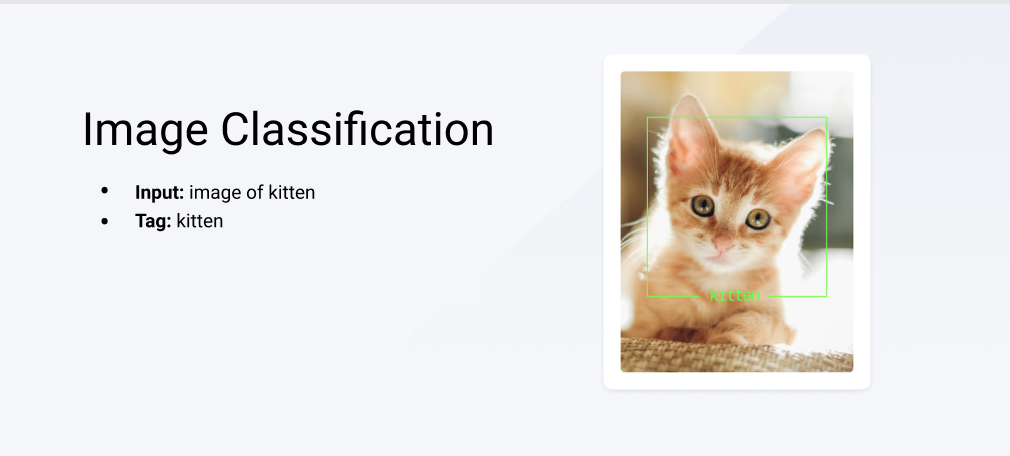Showing how a kitten image is labeled, so a machine learning model can recognize other kitten images and label them correctly.