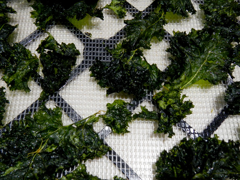 Dried Kale Chips Closeup