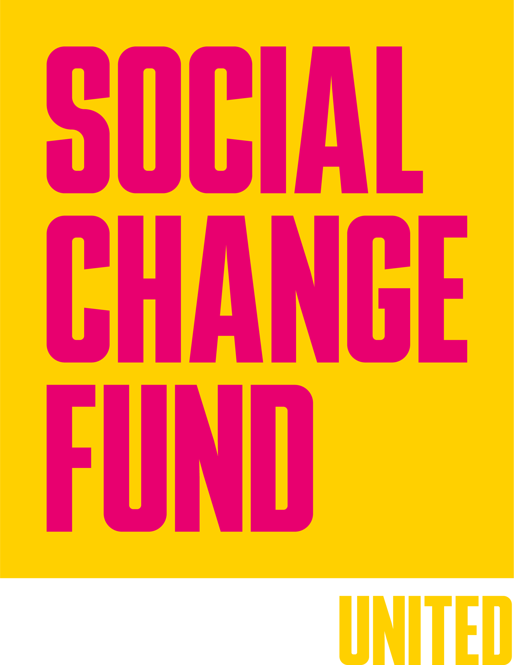 The Social Change Fund