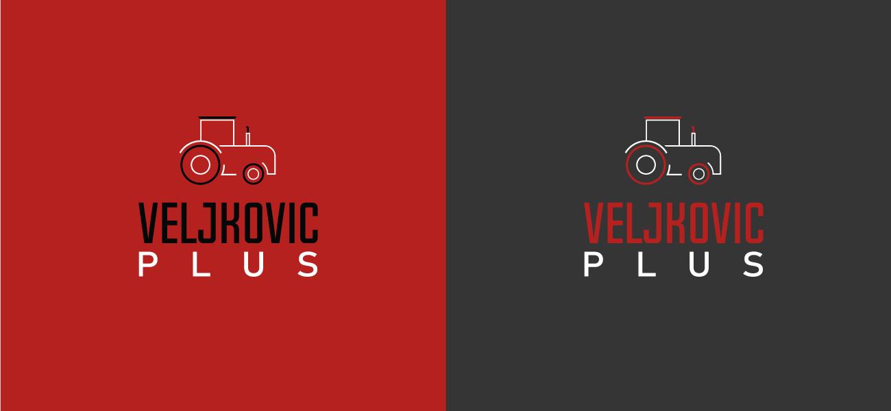 Logo Design Veljkovic Plus presentation