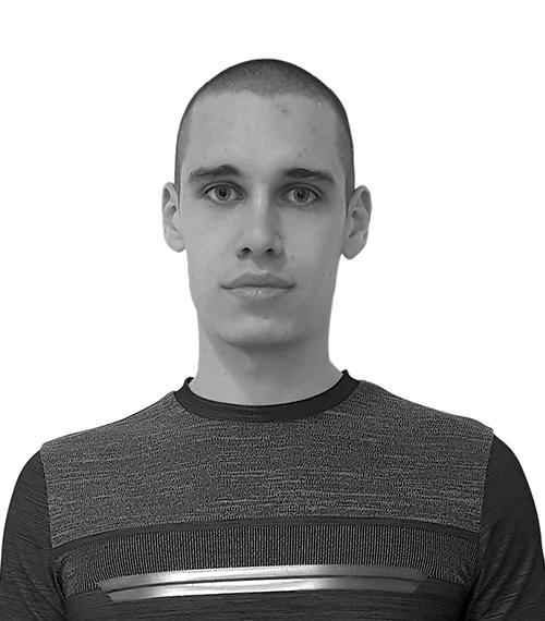 Roman Leventov