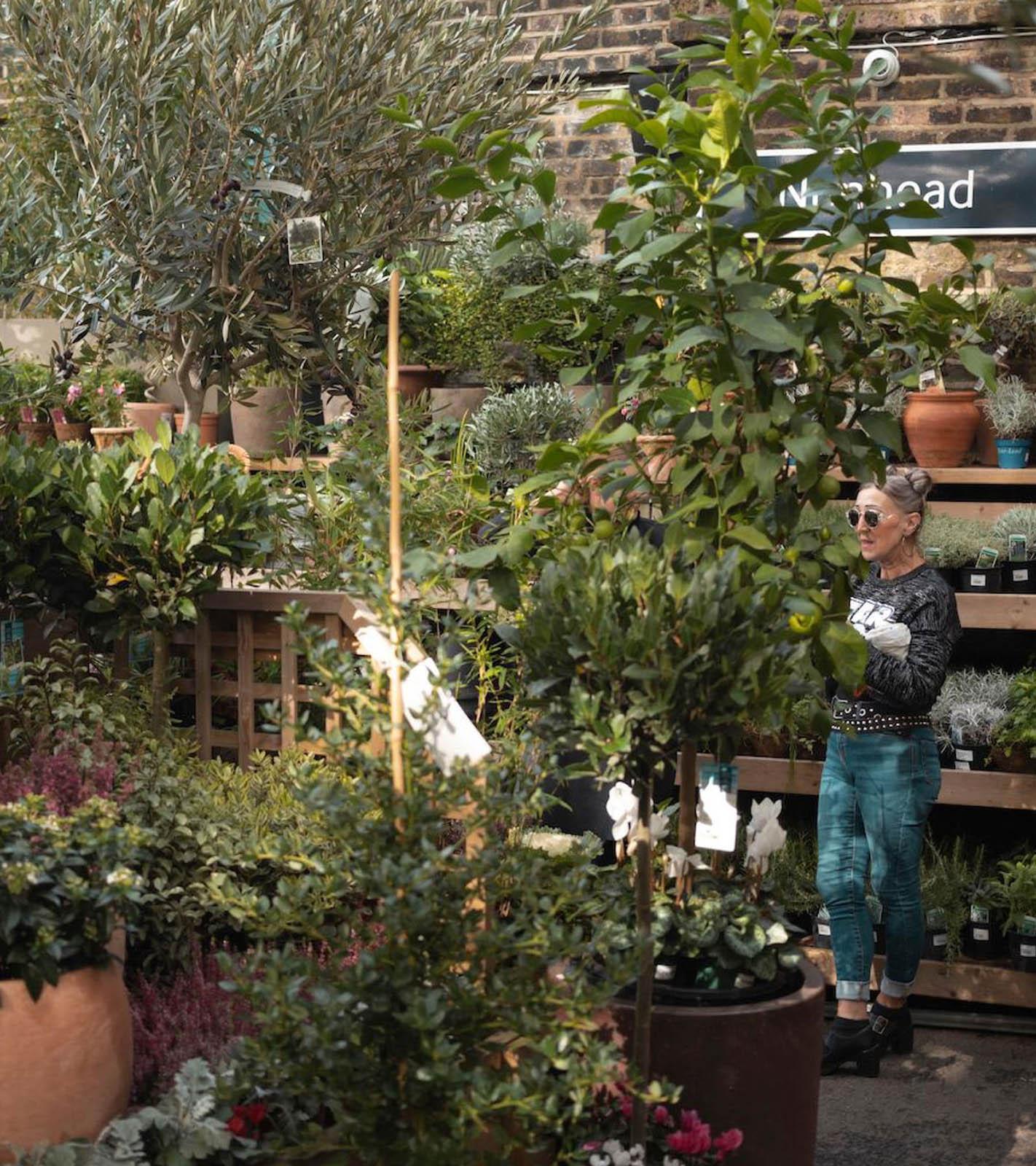 The Nunhead Gardener ist eine kleine Idylle im großen und hektischen London.