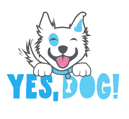 Yes, Dog!