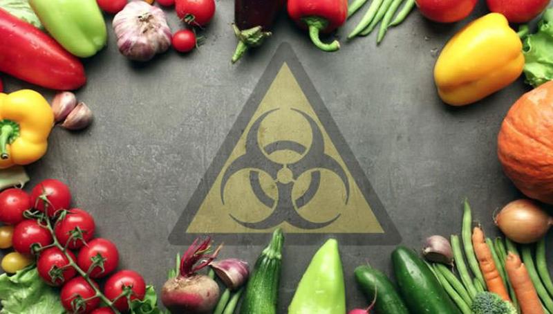 Imagem em destaque para o artigo: Agrotóxicos: 12 coisas que você não sabia