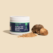 Turkey Tail Mushroom Blend