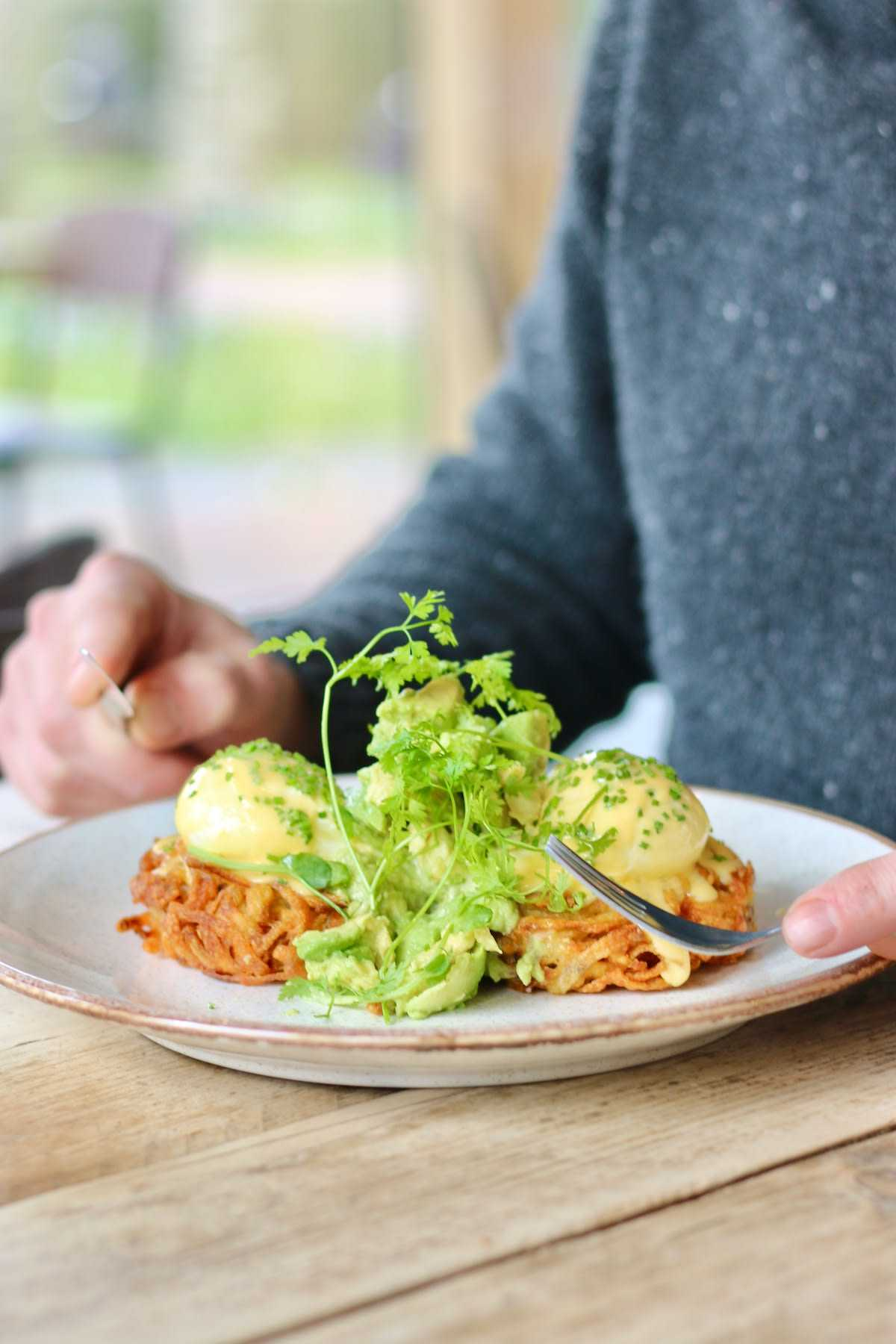 Dignita favorite dish, the Benny Boy, contains hash browns, poached eggs, and avocado at Amsterdam best restaurant