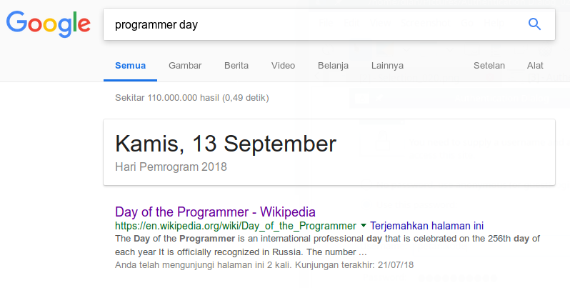 Hari programmer dari google