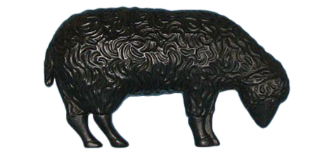 Black Grazing Lamb photo