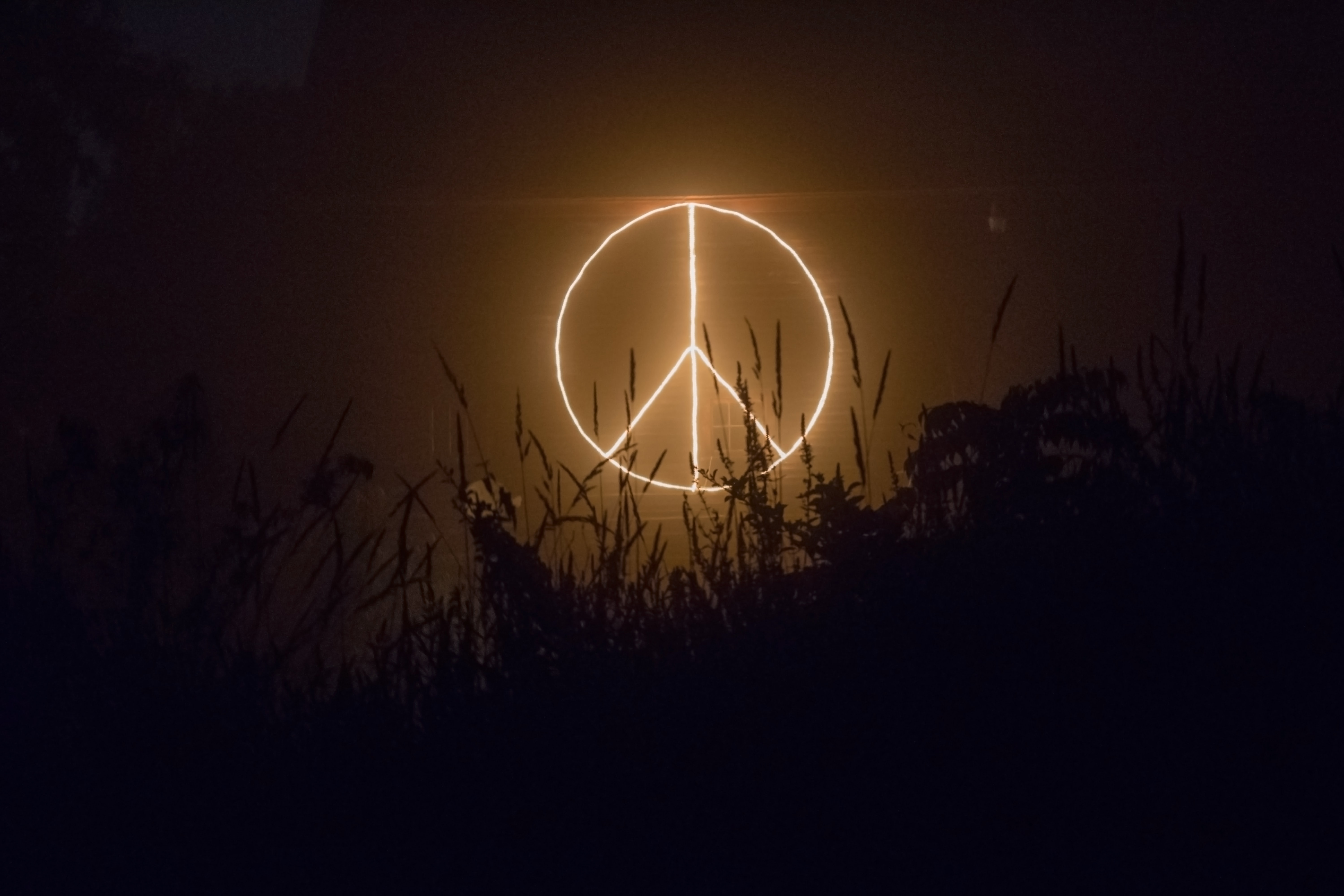 Image: Peace Sign by Candice Seplow