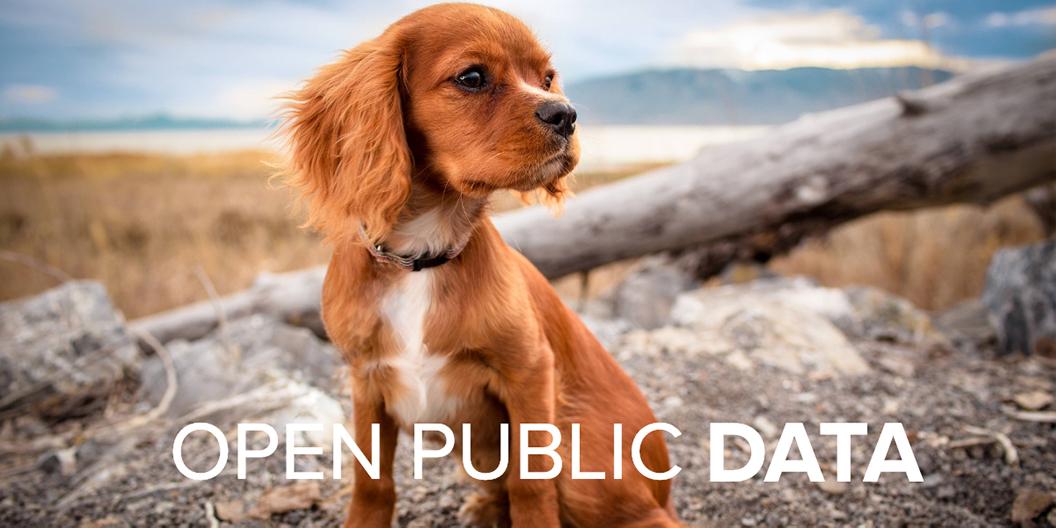 Open Public Data