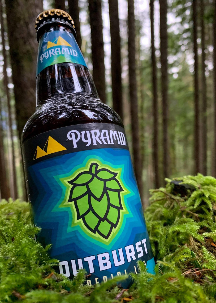 A closeup of a bottle of Pyramid Outburst Imperial IPA sitting on a pile of moss on the forest floor