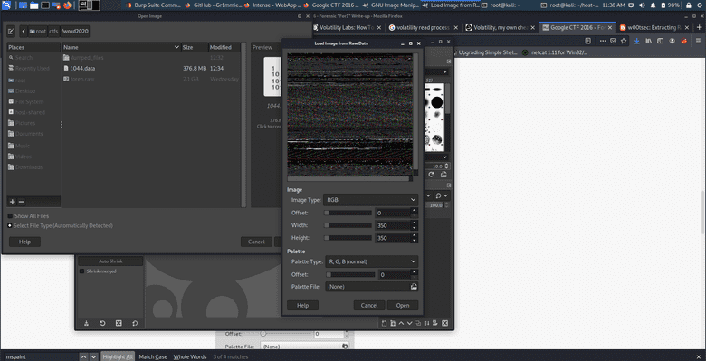 Importing the image into GIMP
