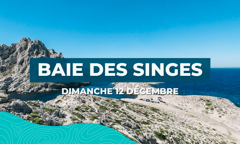 Image principal Baie des Singes (#52)